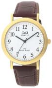 Pánské hodinky Q+Q C150-104