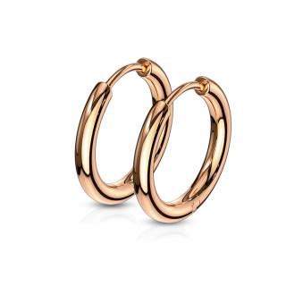 Náušnice kruhy z chirurgické oceli 3065-RG