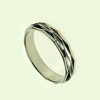 Prsten z chirurgické oceli SELJR786s